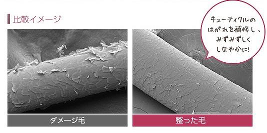 守り髪のアミノ酸系保湿成分の画像