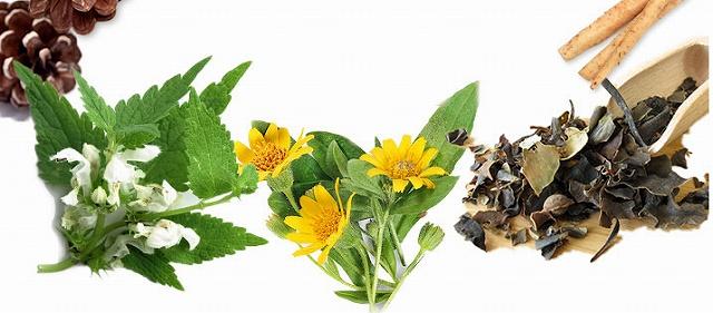 ミクスシャンプーの14種の天然成分配合の画像