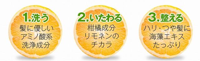 オレンジシャンプーのオレンジ成分の画像