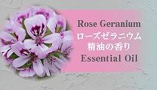 ミクシムポーションシャンプーのローズゼラニウム精油の香りの画像